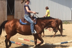 SCCH Quarterhorse Ranch